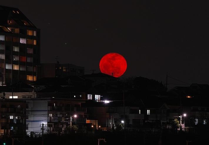 «Кровавая» Луна над Марсом. Жители Витебска увидят редкое астрономическое явление
